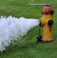 Water Line Flushing